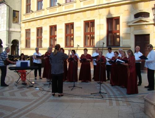 Jelačić nastupio na proslavi Dana Vinkovaca